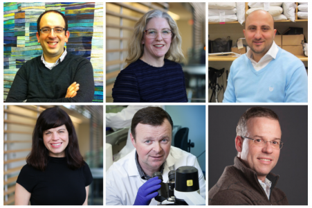 5 DBMS Researchers Awarded CIHR Funding